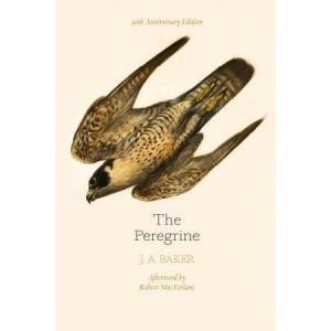 Peregrine: 50th Anniversary Edition: Afterword by Robert Macfarlane, The