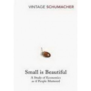 Small is Beautiful: Study of Economics as If People Mattered
