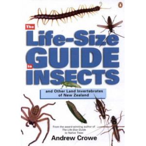 Life-Size Guide to Insects and Other Land Invertebrates of New Zealand