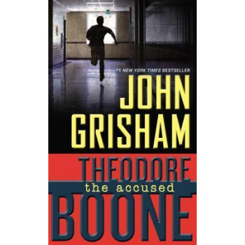 Accused (Theodore Boone #3)