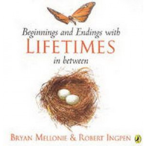 Beginnings & Endings With Lifetimes in Between