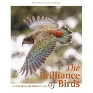 Brilliance of Birds, The