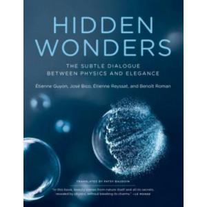Hidden Wonders: Subtle Dialogue Between Physics and Elegance