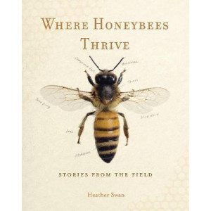Where Honeybees Thrive: Stories from the Field