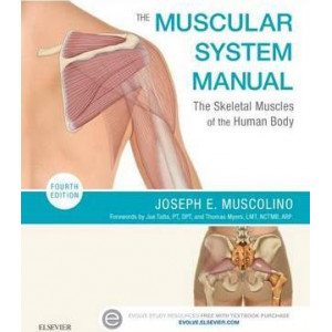 Muscular System Manual, The: The Skeletal Muscles of the Human Body (4th Revised edition)