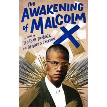 Awakening of Malcolm X, The