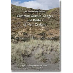 Illustrated Guide to Common Grasses, Sedges & Rushes of NZ