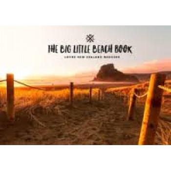 Big Little Beach Book