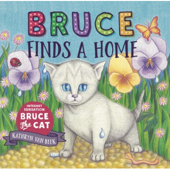 Bruce Finds A Home