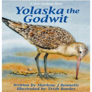 Yolaska the Godwit