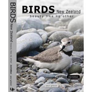 Birds New Zealand : Beauty Like No Other