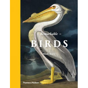 Remarkable Birds: The Beauty and Wonder of the Avian World
