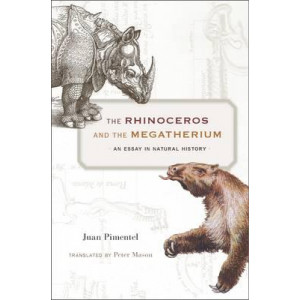 Rhinoceros and the Megatherium: An Essay in Natural History
