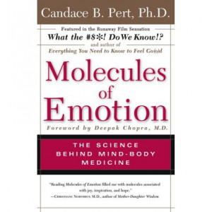 Molecules of Emotion Why You Feel The Way You Feel