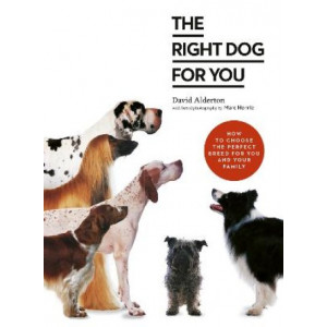 Right Dog for You: How to choose the perfect breed for you and your family