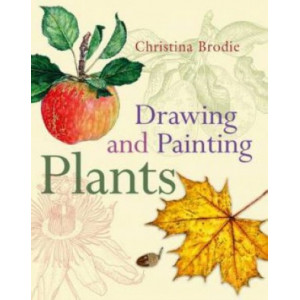 Drawing & Painting Plants