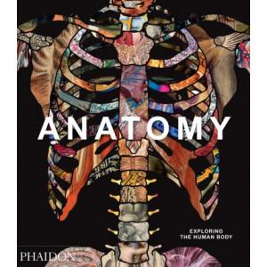Anatomy: Exploring the Human Body