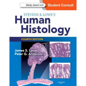 Stevens & Lowe's Human Histology 4E
