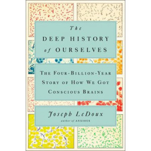 Deep History Of Ourselves: The Four-Billion-Year Story of How We Got Conscious Brains, The