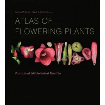 Atlas of Flowering Plants: Visual Studies of 200 Deconstructed Botanical Families