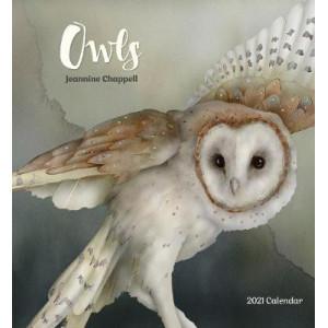 2021 Owls Calendar
