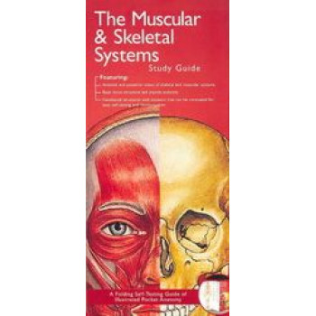 Muscular & Skeletal Systems Study Guide 2E - Illustrated Pocket Anatomy Series