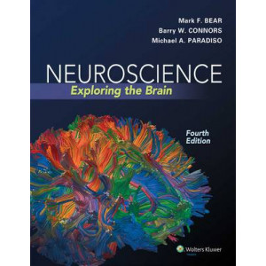 Neuroscience 4E : Exploring the Brain