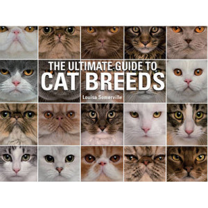 Ultimate Guide to Cat Breeds: A Useful Means of Identifying the Cat Breeds of the World and How to Care for Them