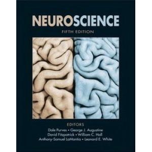 Neuroscience 5E