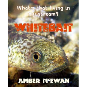 What's That Living in My Stream? Whitebait