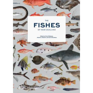 Fishes of New Zealand: A Comprehensive Guide