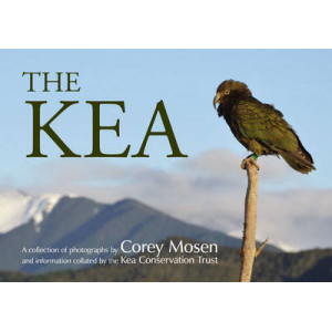 Kea : A Collection of Photographs by Corey Mosen and Information Collated by the Kea Conservation Trust