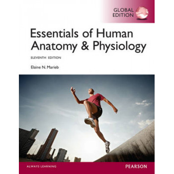 Essentials of Human Anatomy & Physiology 11E