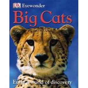 Big Cats   Eye Wonder