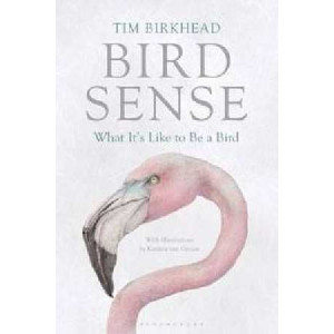 Bird Sense : What it's Like to be a Bird
