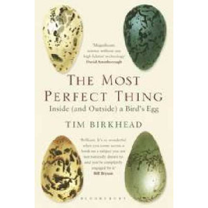 Most Perfect Thing: Inside (and Outside) a Bird's Egg