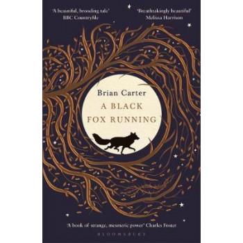 Black Fox Running, A