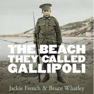 Beach They Called Gallipoli