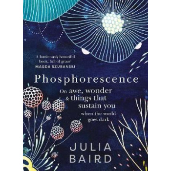 Phosphorescence: On awe, wonder and things that sustain you when the world goes dark