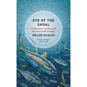 Eye of the Shoal: A Fishwatcher's Guide to Life, the Ocean and Everything