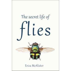 Secret Life of Flies