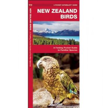 New Zealand Birds: A Folding Pocket Guide to Familiar Species