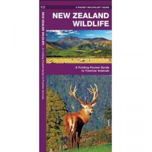 New Zealand Wildlife: A Folding Pocket Guide to Familiar Animals