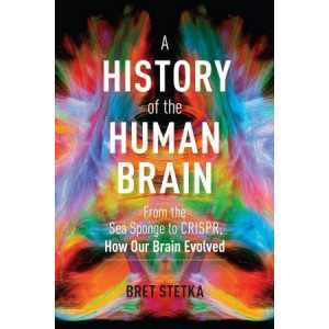 History of the Human Brain: From the Sea Sponge to CRISPR, How Our Brain Evolved