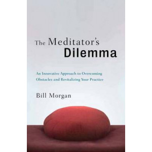 Meditator's Dilemma: An Innovative Approach to Overcoming Obstacles and Revitalizing Your Practice