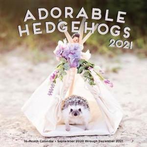 2021 Adorable Hedgehogs: 16-Month Calendar - September 2019 through December 2020
