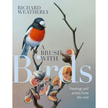 Brush with Birds, A: Paintings and Stories from the Wild