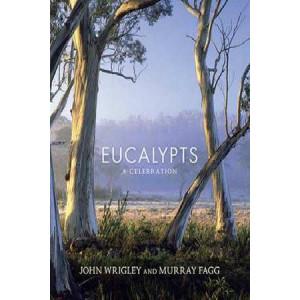 Eucalypts: A Celebration
