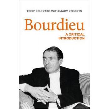 Bourdieu: A Critical Introduction