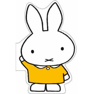 Miffy's Word Book: Miffy's Word Book